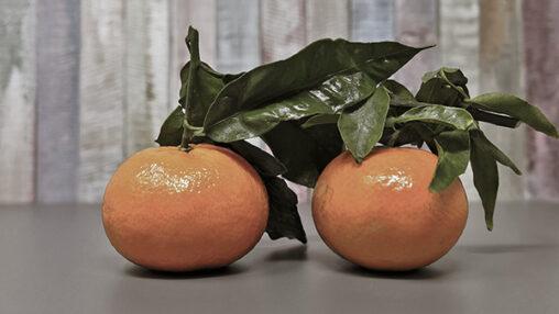 Wat hebben de chirurgen aangetroffen tijdens de operatie? En wat heeft dat te maken met mandarijnen?